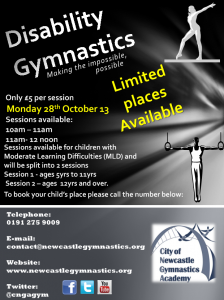 Disability Gymnastics Poster